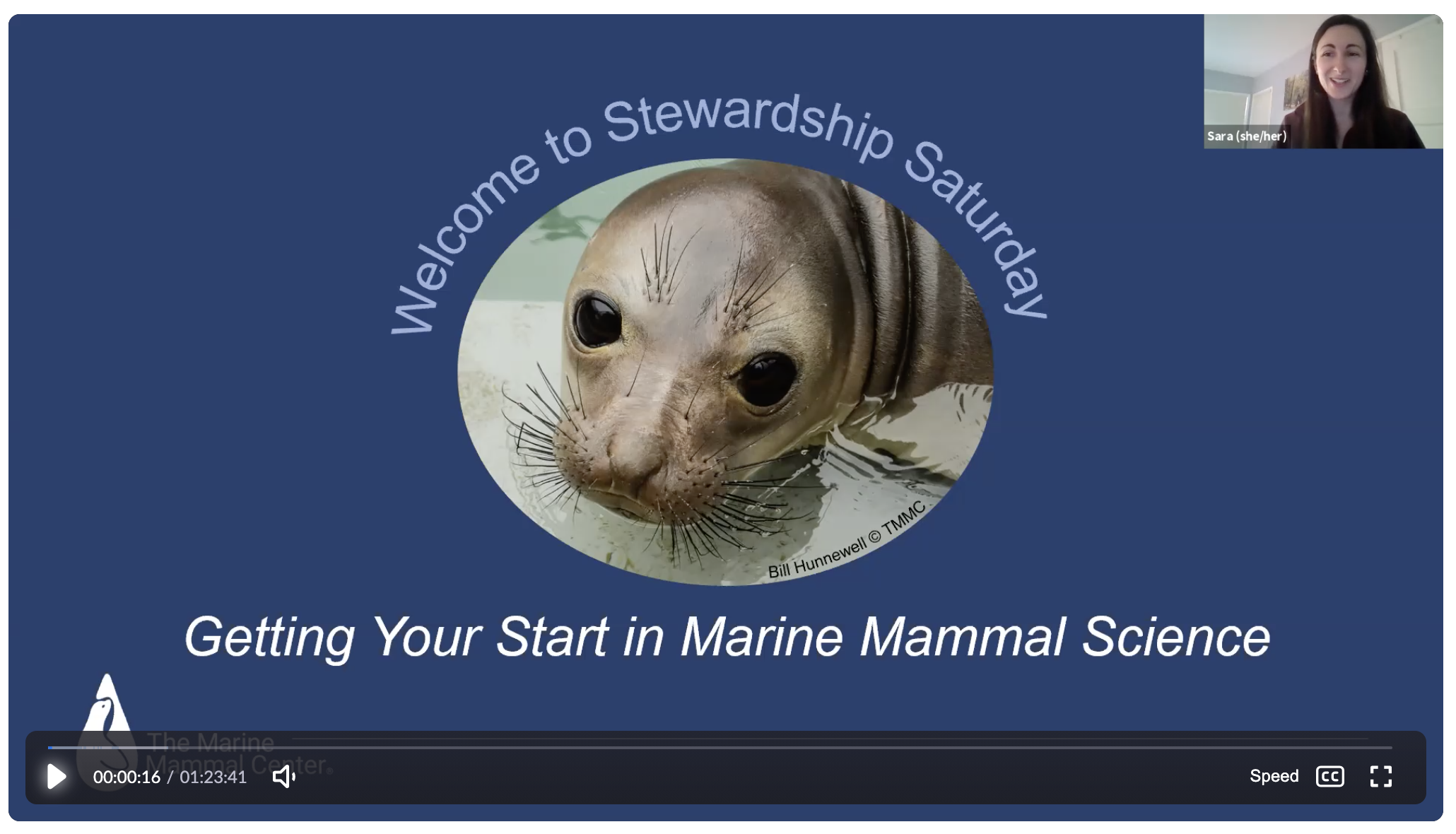 Stewardship Saturday: Getting Your Start in Marine Mammal Science